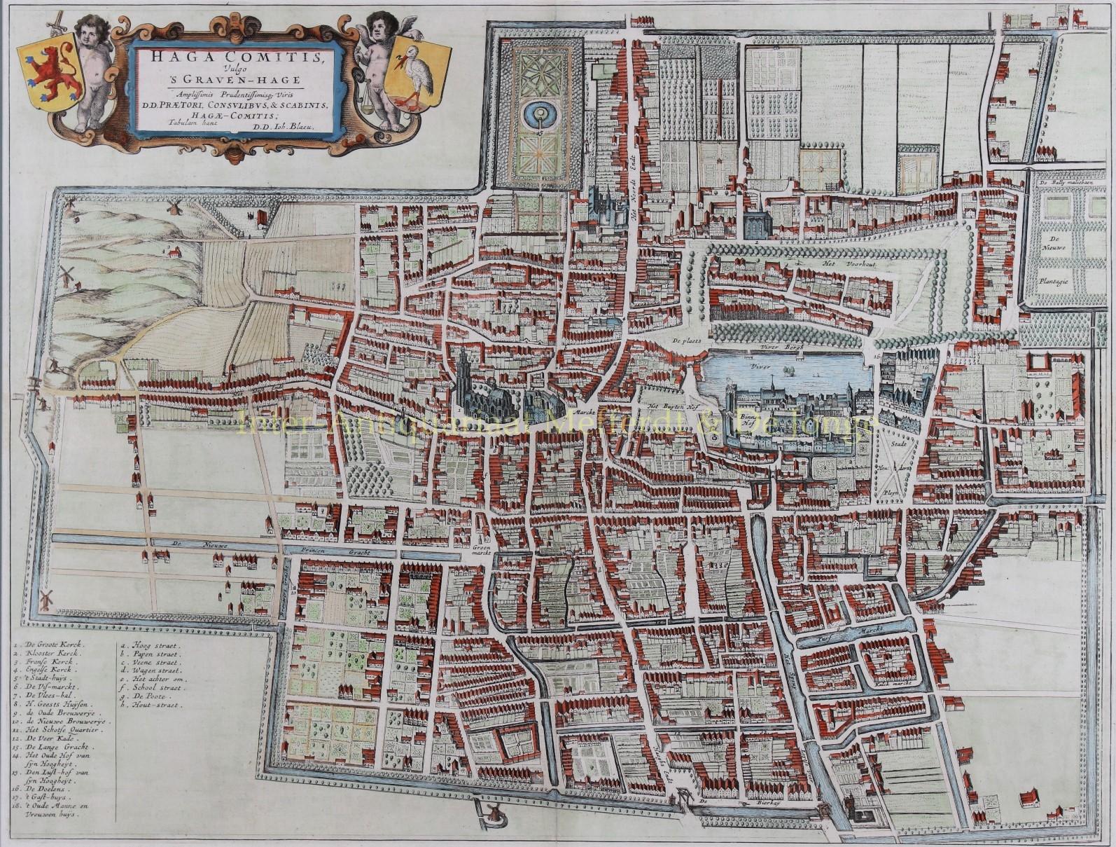 Uitzonderlijk oude kaart 's-Gravenhage Den Haag antieke prent originele gravure &ZM55