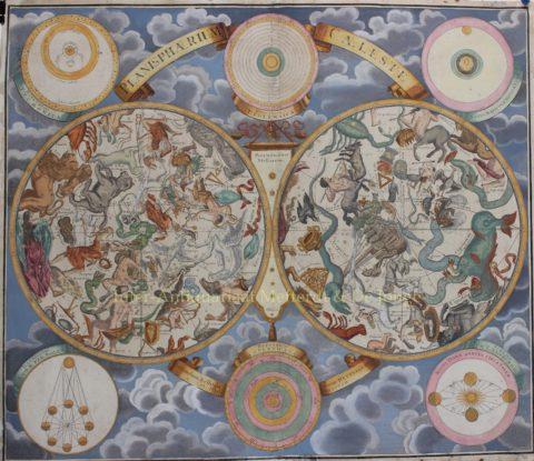 Celestial chart – Johann Baptiste Homann, c. 1740