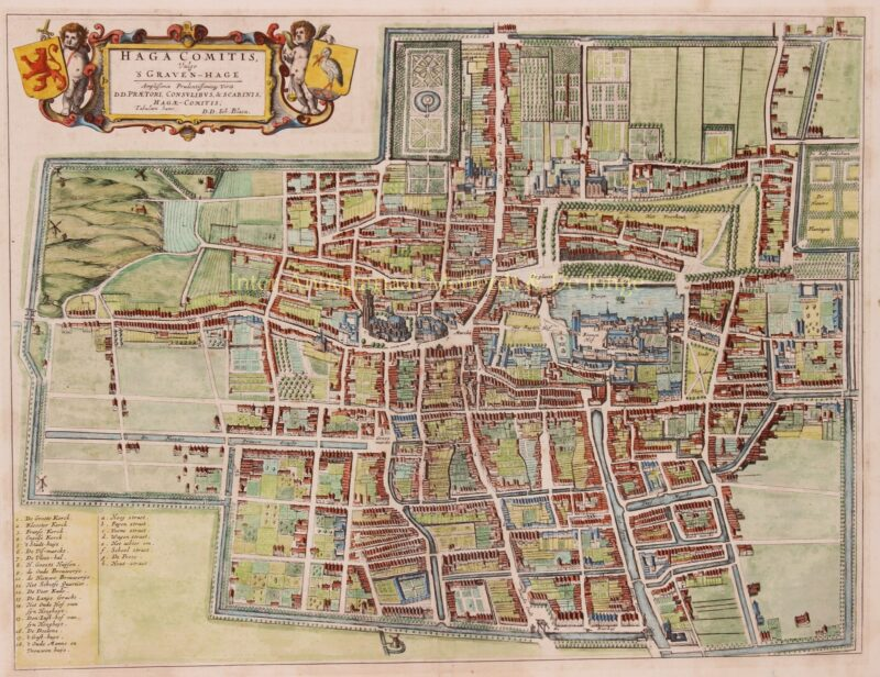 antieke kaart van Den Haag 17e-eeuw