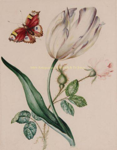 Tulp met roos en vlinder – James Holland, ca. 1825